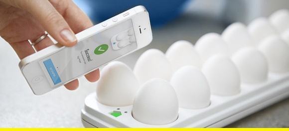 The future of egg storage